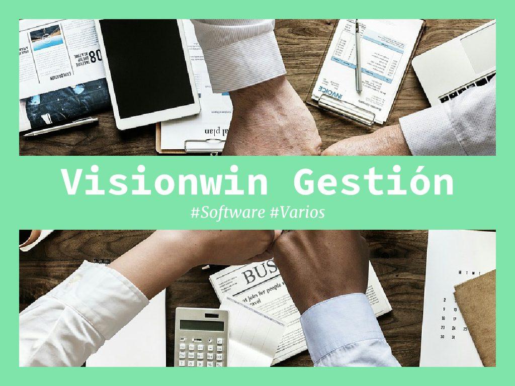 visionwin gestion