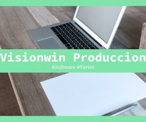 visionwin produccion
